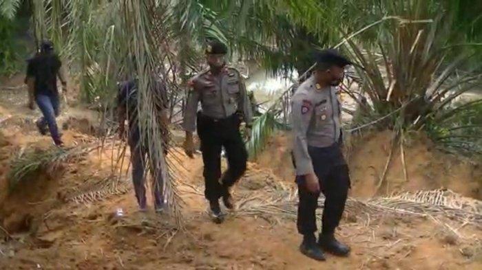 Tadah Kelapa Sawit Curian, Warga Empat Lawang Ini Dibekuk Polisi