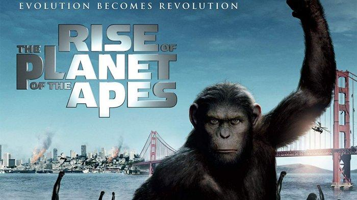 Tayang di Big Movies GTV Sinopsis Rise of the Planet of Apes Hari Ini, Revolusi Kera Lawan Manusia