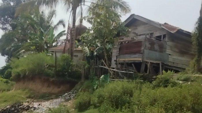Sering Longsor, Warga Pulau Kayu Aro Cemas Rumahnya akan Roboh Karena Abrasi Sungai Batanghari