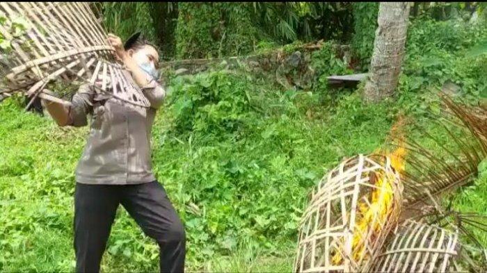 Polisi Bakar Arena Sabung Ayam di Sungai Penuh Jambi, Ini Yang Ditemukan di Lokasi