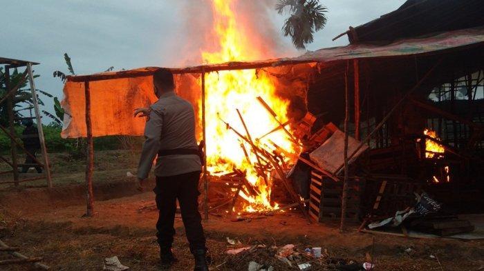 Gelanggang Sabung Ayam di Bagan Pete Dibakar, Kapolsek Kota Baru: Tak Ada Ruang untuk Judi