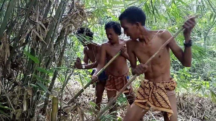 Pendamping SAD Minta BKSDA Pantau Sebab Banyaknya Hewan Mati di Hutan