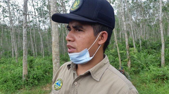 PETI Sudah Mengancam Taman Nasional Bukit Duabelas