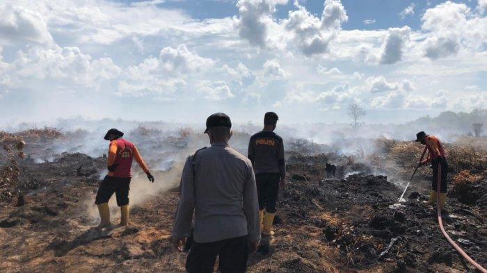 Tim Gabungan Polda Jambi: 25 HA Lahan Terbakar di Sadu Tanjabtim Berhasil Dipadamkan