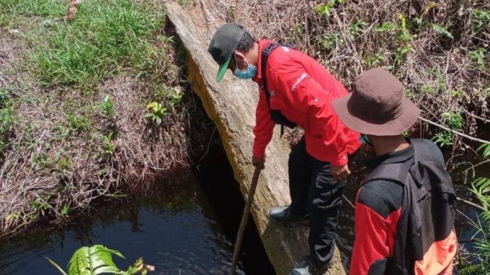Status Siap Siaga Karhutla Masih Berlaku, Kemungkinan Penurunan Status Jika Hujan di Jambi Merata