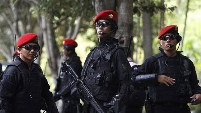 Satgultor 81, pasukan misterius bentukan Prabowo Subianto dan Luhut Panjaitan.