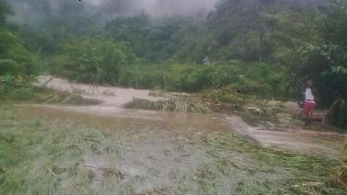 4 Hari Terendam Banjir, 15 Hektare Sawah Gagal Panen