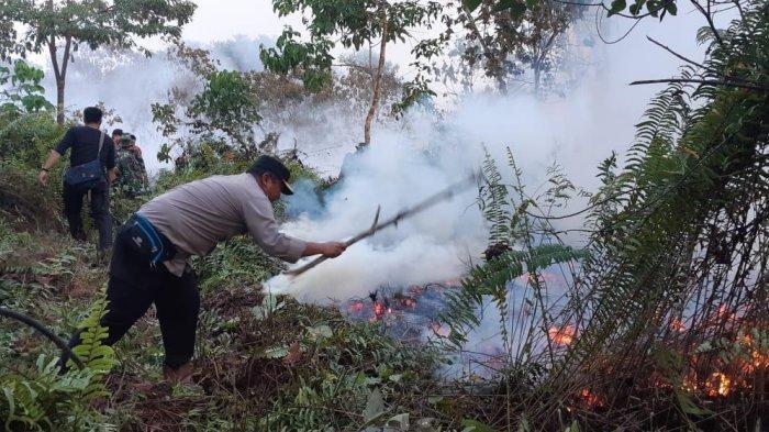 Sejak Kemarau, Ratusan Hektar Lahan Terbakar di Sarolangun, Ini Kata Bupati Cek Endra