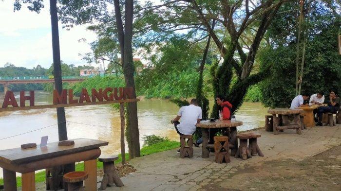 Berada di Tengah Kota Bangko, Dipadu dengan Nuansa Alami, Begini Nyamannya Kongkow di Mlangun Coffee