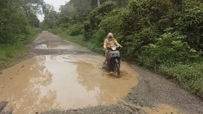 Seperti Kubangan Kerbau, Jalan Kabupaten Menuju Kota Muara Bungo Rusak Parah