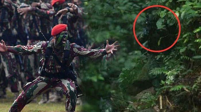 KOPASSUS Bisa Matikan Musuh dengan Mudah Dalam Perang Hutan Bila Pakai Seragam Ini, Ahli Kamuflase