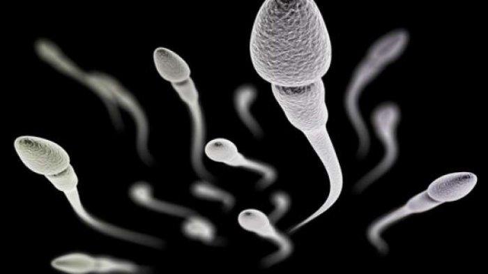 Bahaya Menelan Sperma, Waspadai Infeksi Menular Seksual