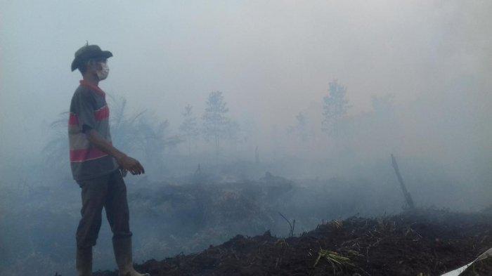 Sudah 11 Hari Lahan Gambut di Desa Sipin Teluk Duren Terbakar, Warga Desa Arang-arang Terpapar Asap