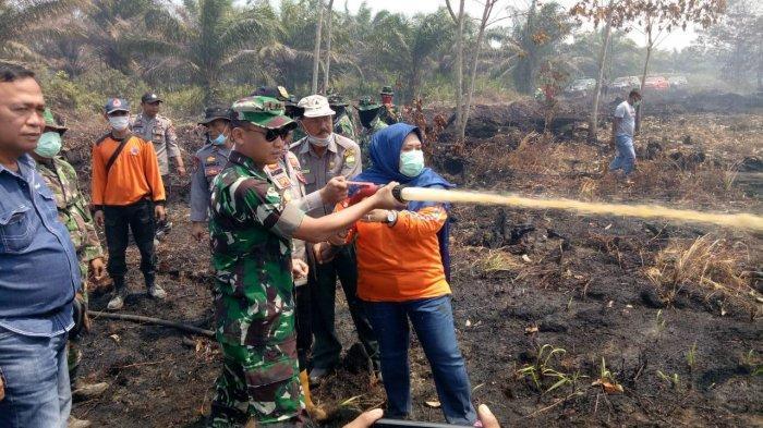 Sudah Seminggu Terbakar, Kebakaran Lahan di Desa Sipin, Teluk Duren, Muarojambi, Makin Meluas