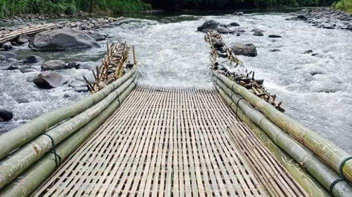 Kearifan Lokal 'Sukom' di Merangin, Semalam Riza Berhasil Bawa 70 Kilogram Ikan