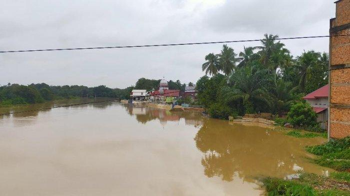 Hampir Semua Sungai di Kabupaten Bungo Airnya Keruh, DLH Sebut Imbas Aktivitas Penambangan Ilegal