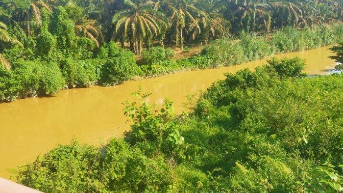 Warga Dusun Rantel Bungo Diserang Gatal-gatal, Diduga Akibat Limbah PETI
