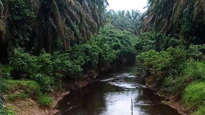 Diduga Tercemar Limbah Perusahaan, Air Sungai Desa Tanjung Lebar Muarojambi Akan Diuji Laboratorium