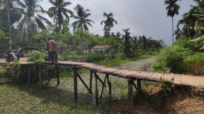 12 Tahun Tak Pernah Dinormalisasi, Sungai Lambur Tanjabtim Nyaris Buntu oleh Tanaman Liar