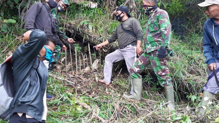 Kagetnya Wanita di Kerinci Ini, Temukan Ganja di Ladang, 8 Batang Dijadikan Polisi sebagai Petunjuk