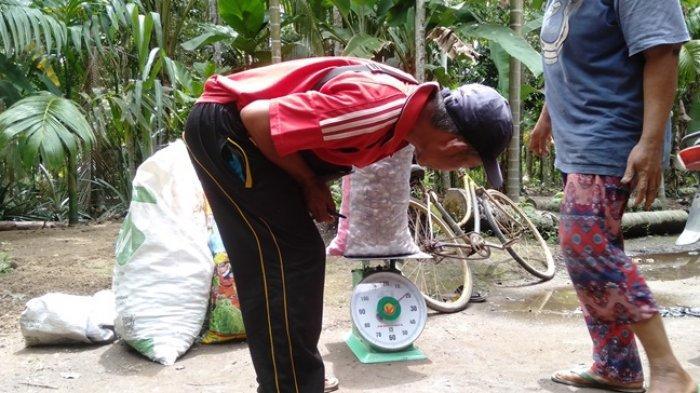 Disperindag Tanjab Timur Bakal Uji Tera Timbangan Tingkat Tauke Kecil di Kelurahan dan Desa