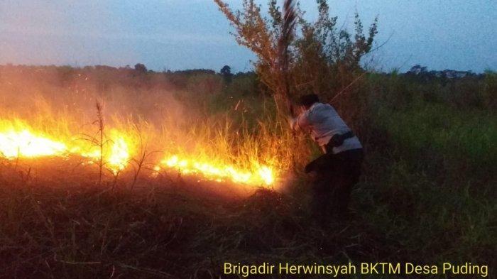 Curah Hujan Minim, Titik Api Karhutla Muncul di Desa Pulau Mentaro Muarojambi