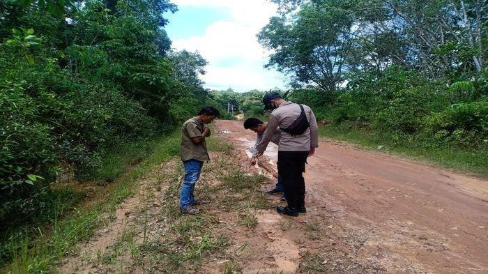 Petugas kepolisian sedang melakukan olah Tempat Kejadian Perkara (TKP) jalan dekat kuburan Desa Catur Tunggal, Kecamatan Mesuji Makmur, OKI, Minggu (22/11/2020).