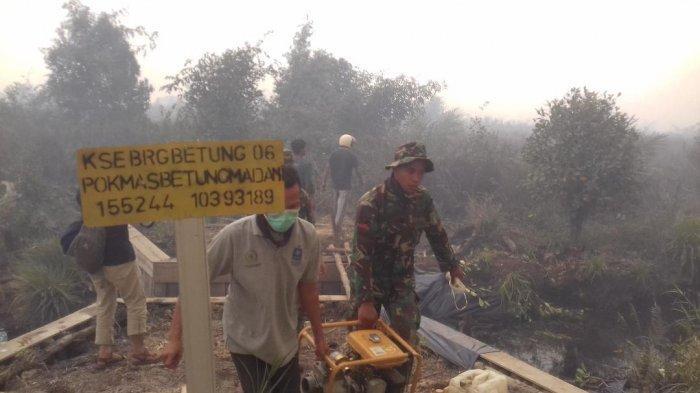 KKI WARSI Sebut Ada 41 Perusahaan Sawit di Jambi, yang Lahannya Terbakar di Tahun 2019