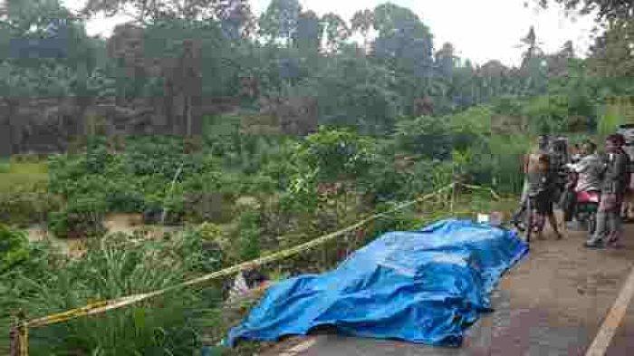 Truk bermuatan ambles ke sungai menghindari pengangkut kelapa sawit diDesa Teluk Kayu Putih, Kecamatan VII Koto, Kabupaten Tebo, Selasa 10 November 2020