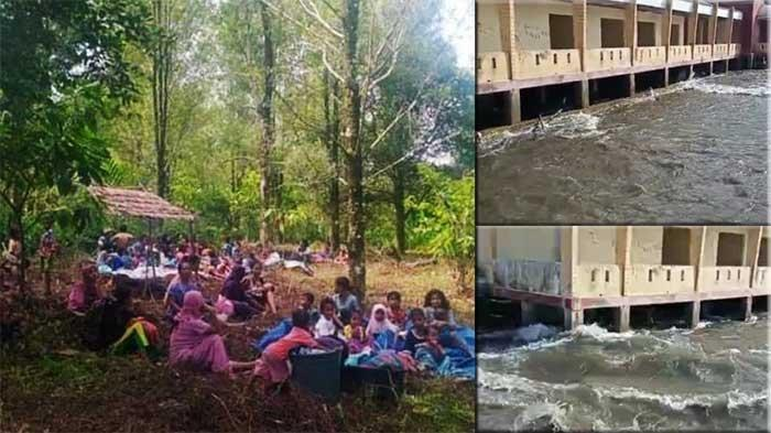 Terjadi Tsunami Kecil Usai Gempa di Maluku Tengah, Begini Penjelasan BMKG