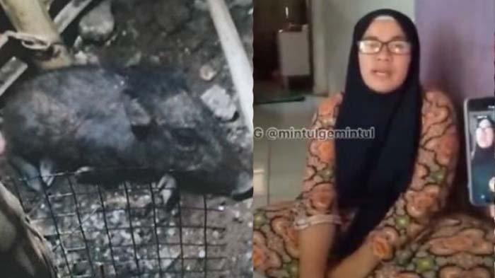 Sosok Wati Tuding Tetangga Pesugihan Ternyata Rumahnya Ngontrak, Sempat Mau Bunuh Diri saat Diusir