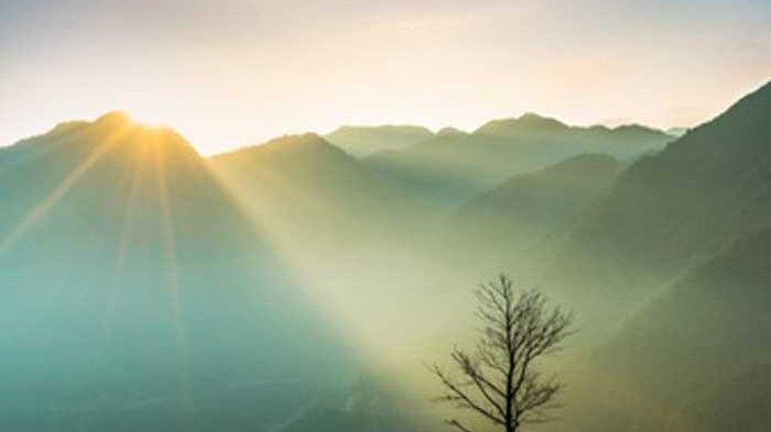 Kata-kata Selamat Pagi Sebagai Motivasi dan Penyemangat di Pagi Hari