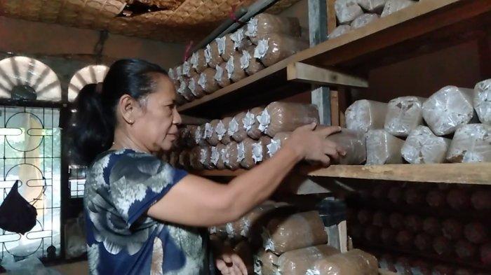 Wati Warga RT 36 Kelurahan Jelutung, Jelutung, Kota Jambi melakukan budidaya jamur tiram.