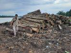 05062020_kayu-hasil-tangkapan-polda-jambi-yang-dititipkan-di-sebuah-shaumil-di-sekernan.jpg