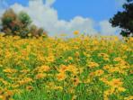 08062016-hestis-garden_20160608_195356.jpg