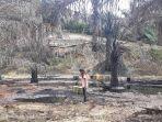 200-hektare-tahura-tercemar-hasil-mapping-tim-gabungan-pencemaran-lingkungan-illegal-drilling.jpg