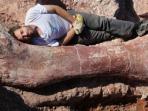 20140519_fosil_dinosaurus.jpg