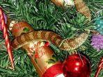 24112016-ular-di-pohon-natal_20161224_230429.jpg