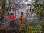 245-hektare-lahan-terbakar-damkar-bungo-catat-ada-13-kebakaran-sepanjang-oktober-2019.jpg