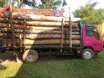 5-truk-kayu-diamankan-26022021.jpg