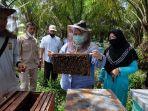 budidaya-madu-lebah-di-desa-danau-lamo-diharapkan-bupati-masnah-jadi-destinasi-wisata.jpg