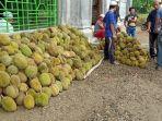 durian-masjid-baitussalam3.jpg