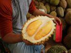durian_20180329_140800.jpg