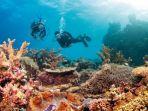 great-barrier-reef_20161207_153828.jpg