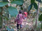 hutan-menuju-situs-hindu.jpg
