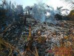 juli-2019-ada-12-kasus-kebakaran-lahan-terjadi-di-kabupaten-batanghari-dengan-luas-1823-hektare.jpg