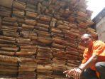 kayu-ilegal_20170327_124202.jpg