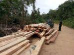 kayu-yang-ditebang-pembalak-diolah_20180313_140747.jpg
