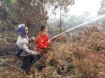 kebakaran-hutan-lahan-di-sadu_20180215_110353.jpg