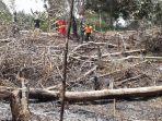kemarau-kering-hotspot-kebakaran-hutan_20180917_193249.jpg